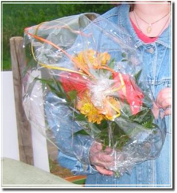 Blumen von Frau Vogel